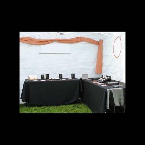 Jolene Beckman 2020 corn hill arts festival 4 artist 285126