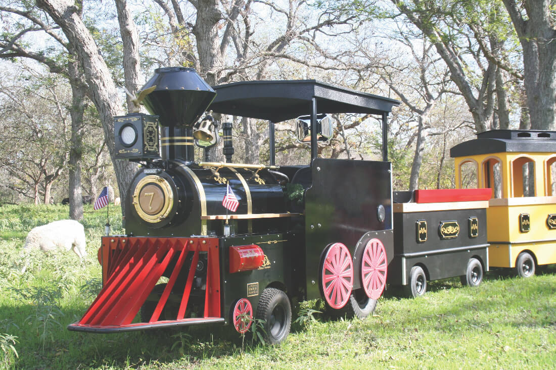 Stokoe Farms Express Train - Corn Hill Arts Festival